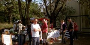 marche-automne-2009-6